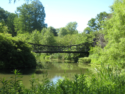Forest Park - bridge