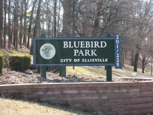 St. Louis in Pictures ~ Bluebird Park