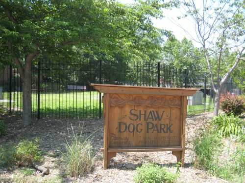 Let Your Dog Run in a St. Louis Dog Park