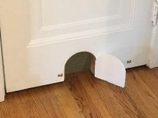 Cat Door options | Arch City Homes