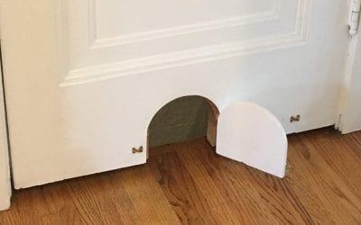 Creative Cat Door Solution for your Home